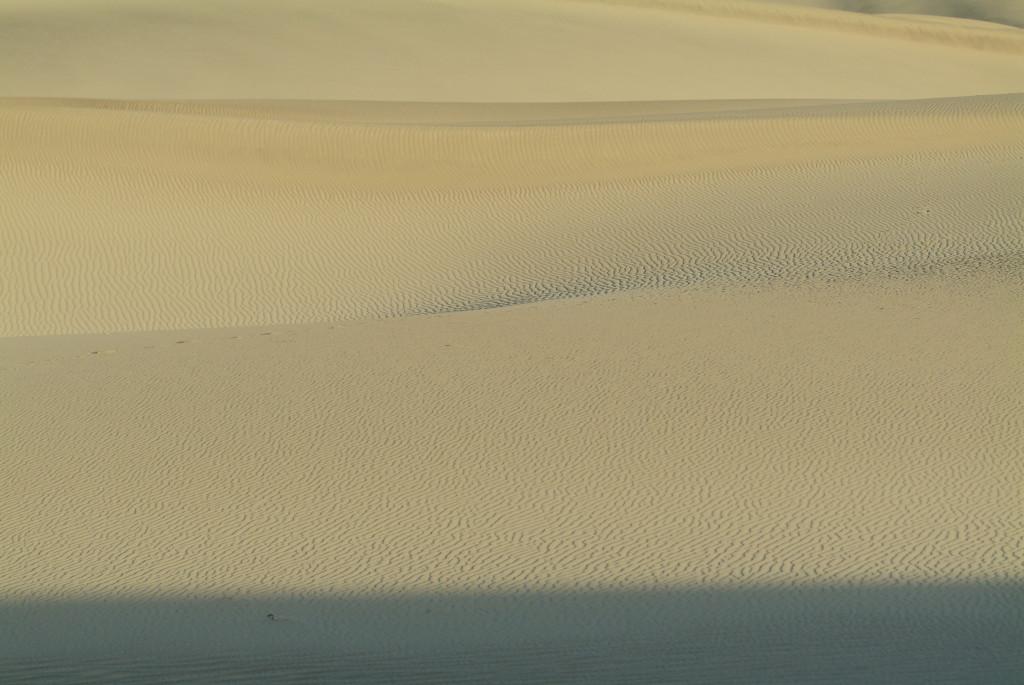 美國國家公園 沙漠篇