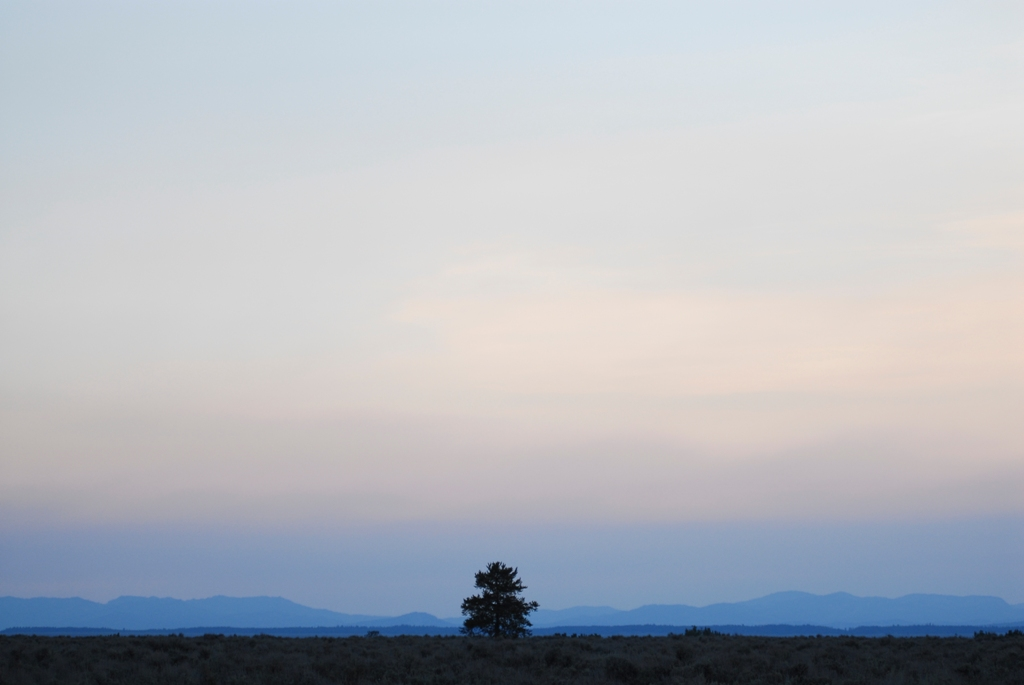 大提頓國家公園